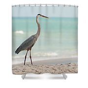 Blue Heron And The Sea Shower Curtain