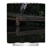 Blue Heron At Dusk Shower Curtain