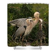 Blue Heron Family Shower Curtain