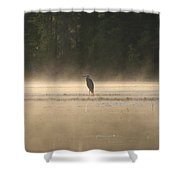 Blue Heron Morning Shower Curtain