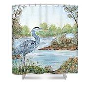 Blue Heron Of The Marshlands Shower Curtain