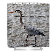 Blue Heron  On The Lake Shower Curtain