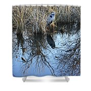 Blue Heron. Shower Curtain