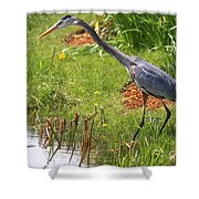 Blue Heron Scene Shower Curtain