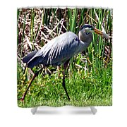 Blue Heron With Lunch Shower Curtain