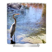 Blue Heron With Shadow Shower Curtain