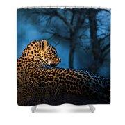 Blue Hour Leopard Shower Curtain