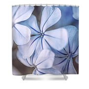 Blue Houres, Blue Flowers Shower Curtain