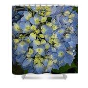 Blue Hydrangea Bouquet Shower Curtain