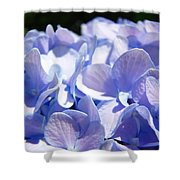Blue Hydrangea Flowers Art Prints Baslee Troutman Shower Curtain