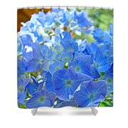 Blue Hydrangea Flowers Art Prints Summer Hydrangeas Baslee Shower Curtain