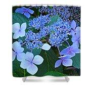 Blue Hydrangea Flowers Floral Art Baslee Troutman Shower Curtain