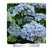 Blue Hydrangeas Art Prints Hydrangea Flowers Giclee Baslee Troutman Shower Curtain