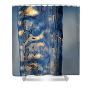 Blue Ice 6 Shower Curtain