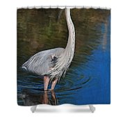 Blue In May Shower Curtain