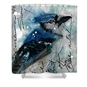 Blue In Snow Shower Curtain