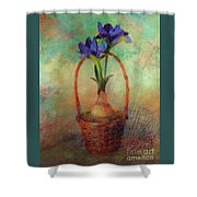 Blue Iris In A Basket Shower Curtain