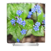 Blue Jack Frost Flowers Shower Curtain