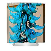 Blue Jade Strand Shower Curtain