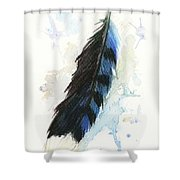 Blue Jay Feather Splash Shower Curtain by Brandy Woods