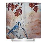 Blue Jay - Geai Bleu Shower Curtain