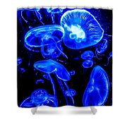 Blue Jellies Shower Curtain