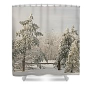 Blue Knob Winter Shower Curtain