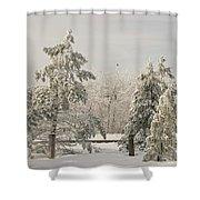 Blue Knob Winter Shower Curtain