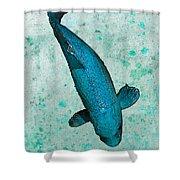Blue Koi Shower Curtain