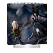 Blue Magnolia Shower Curtain