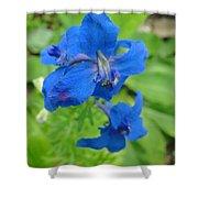 Blue Majestu Shower Curtain