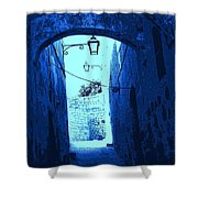 Blue Maltese Arch Shower Curtain