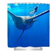 Blue Marlin Magic Shower Curtain