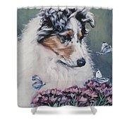 Blue Merle Collie Pup Shower Curtain