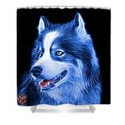 Blue Modern Siberian Husky Dog Art - 6024 - Bb Shower Curtain