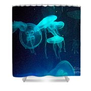Blue Monsters Shower Curtain