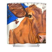 Blue Moo Shower Curtain