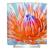 Blue Orange Lily Shower Curtain