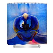 Blue Orchid Heart Shower Curtain