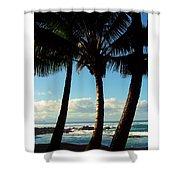 Blue Palms Shower Curtain by Karen Wiles