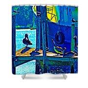 Blue Pelicans Shower Curtain