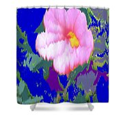 Blue Pink Shower Curtain