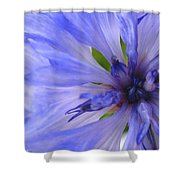 Blue Princess Shower Curtain