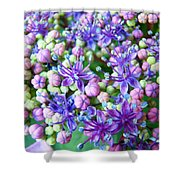 Blue Purple Hydrangea Flower Macro Art Shower Curtain