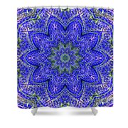 Blue Purple Lavender Floral Kaleidoscope Wall Art Print Shower Curtain