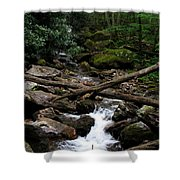 Blue Ridge Brook Shower Curtain