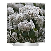 Blue Ridge Mountain Laurel Shower Curtain