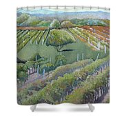 Blue Ridge Vineyards 4.0 Shower Curtain