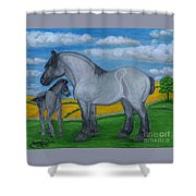 Blue Roan Mare With Her Colt Shower Curtain