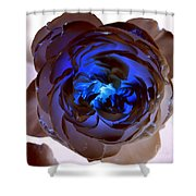 Blue Rose Glow Shower Curtain